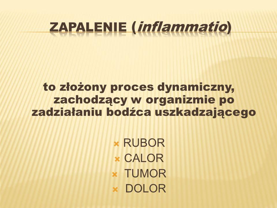 to złożony proces dynamiczny, zachodzący w organizmie po zadziałaniu bodźca uszkadzającego RUBOR CALOR TUMOR DOLOR
