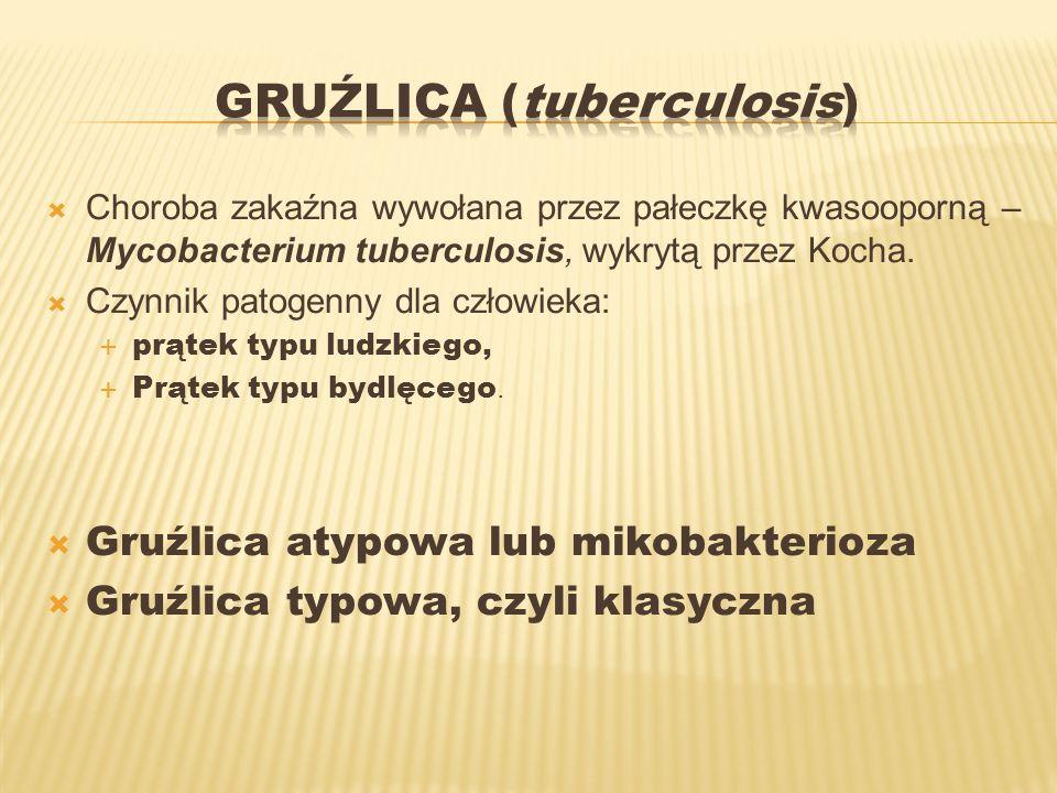 Choroba zakaźna wywołana przez pałeczkę kwasooporną – Mycobacterium tuberculosis, wykrytą przez Kocha. Czynnik patogenny dla człowieka: prątek typu lu