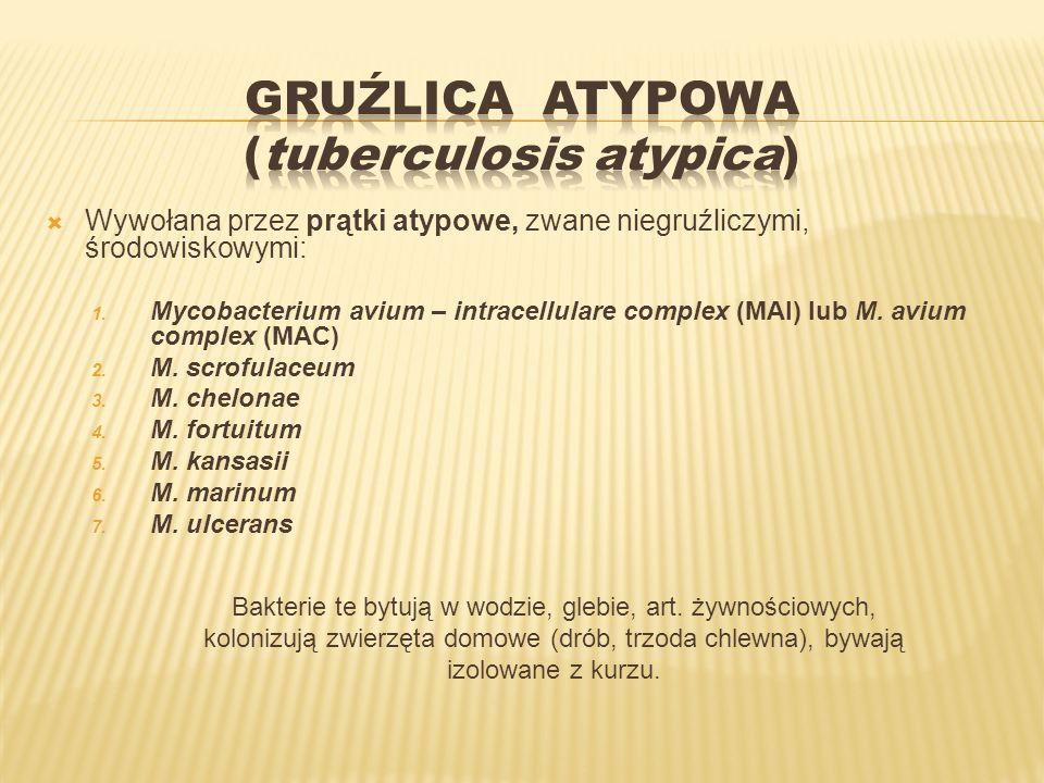 Wywołana przez prątki atypowe, zwane niegruźliczymi, środowiskowymi: 1. Mycobacterium avium – intracellulare complex (MAI) lub M. avium complex (MAC)