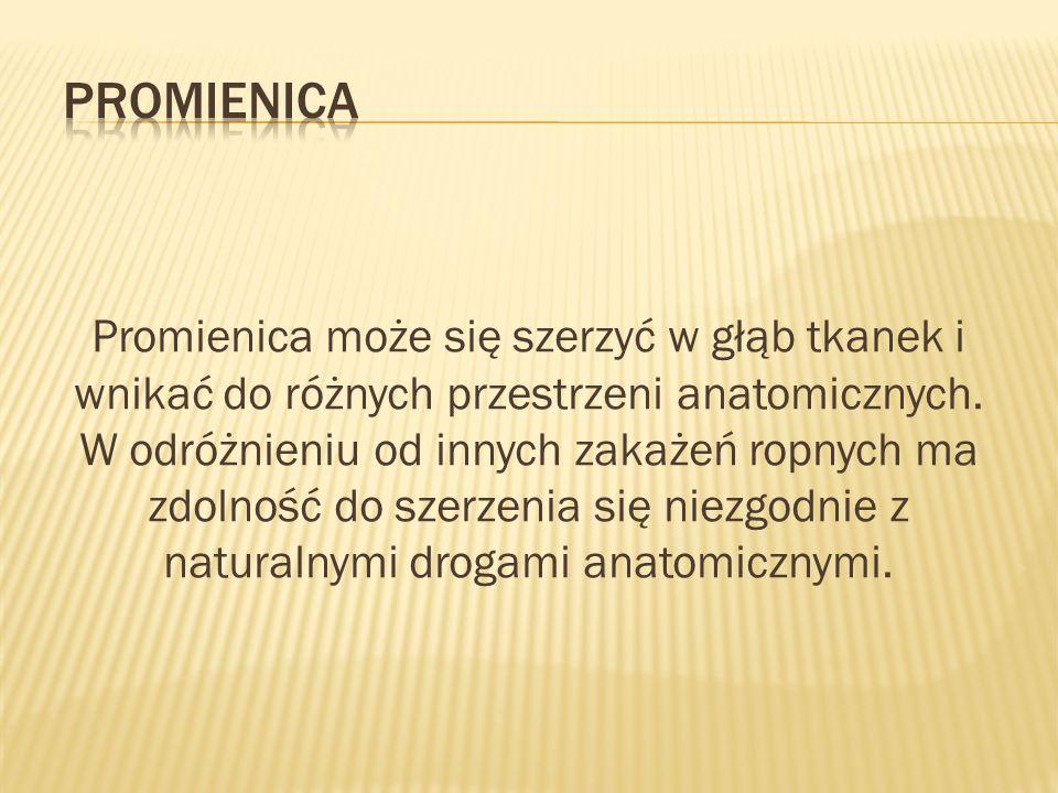 Promienica może się szerzyć w głąb tkanek i wnikać do różnych przestrzeni anatomicznych. W odróżnieniu od innych zakażeń ropnych ma zdolność do szerze