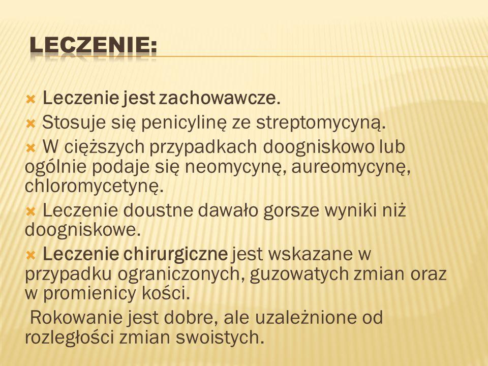 Leczenie jest zachowawcze. Stosuje się penicylinę ze streptomycyną. W cięższych przypadkach doogniskowo lub ogólnie podaje się neomycynę, aureomycynę,