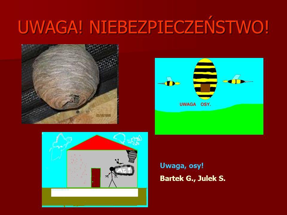 UWAGA! NIEBEZPIECZEŃSTWO! Uwaga, osy! Bartek G., Julek S.