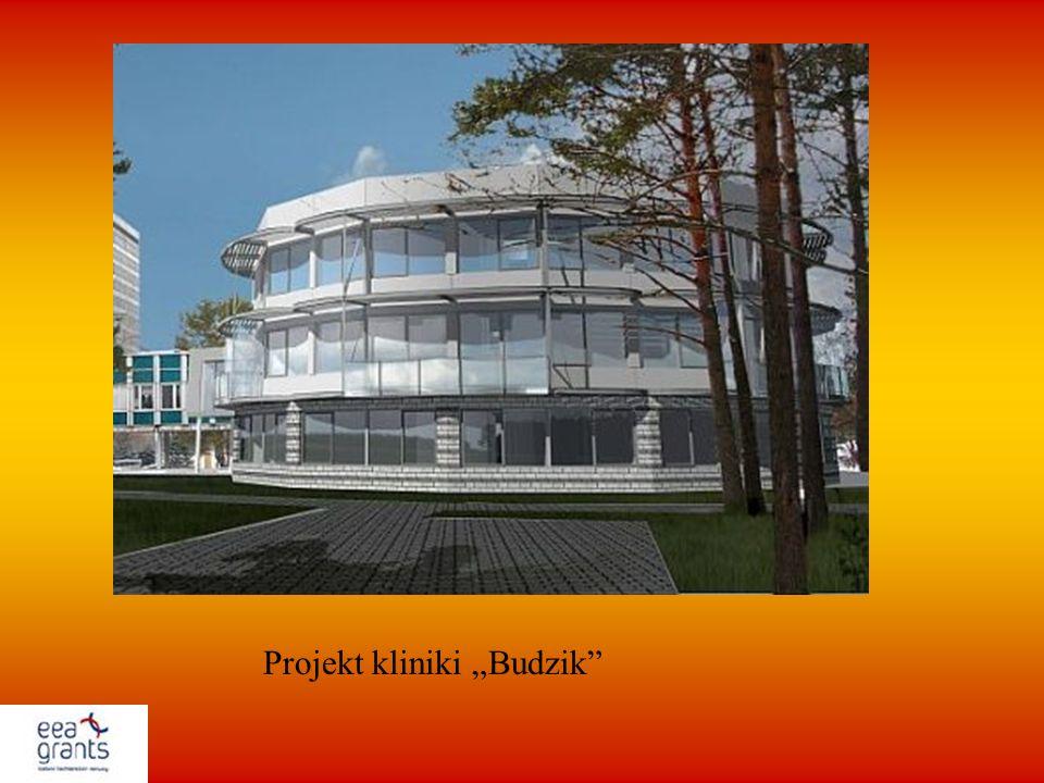 Projekt kliniki Budzik