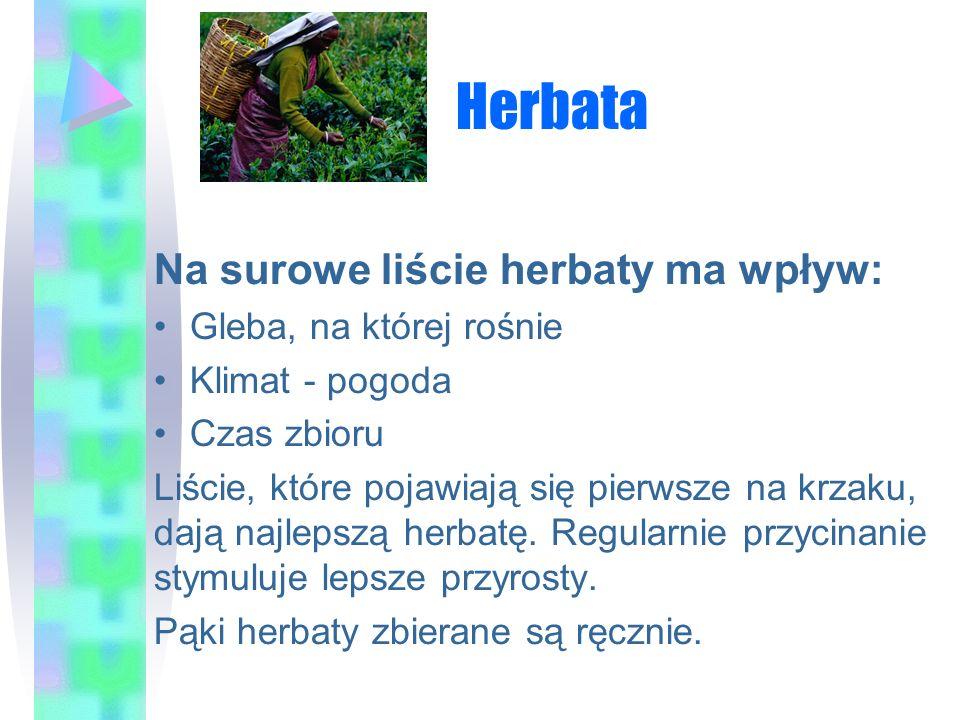 Herbata Na surowe liście herbaty ma wpływ: Gleba, na której rośnie Klimat - pogoda Czas zbioru Liście, które pojawiają się pierwsze na krzaku, dają na