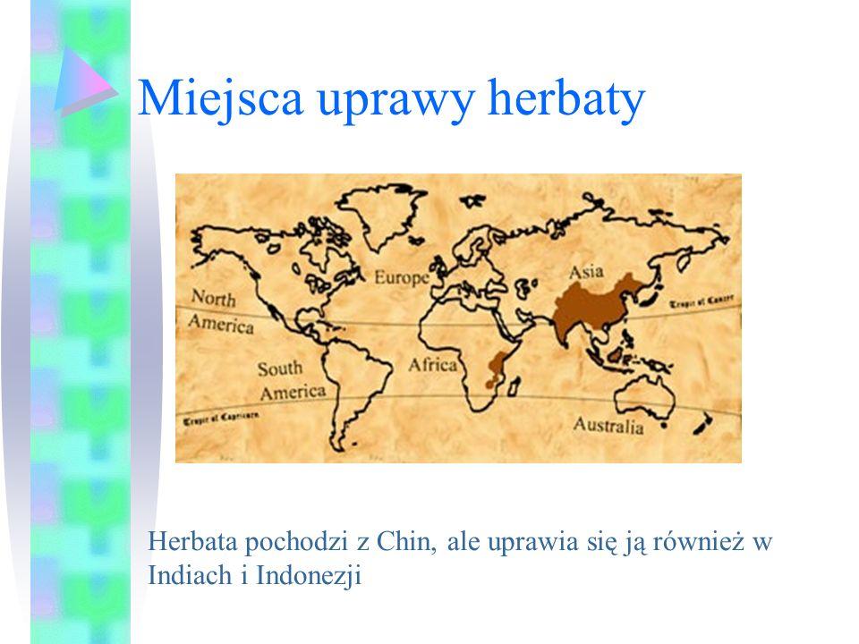 Miejsca uprawy herbaty Herbata pochodzi z Chin, ale uprawia się ją również w Indiach i Indonezji