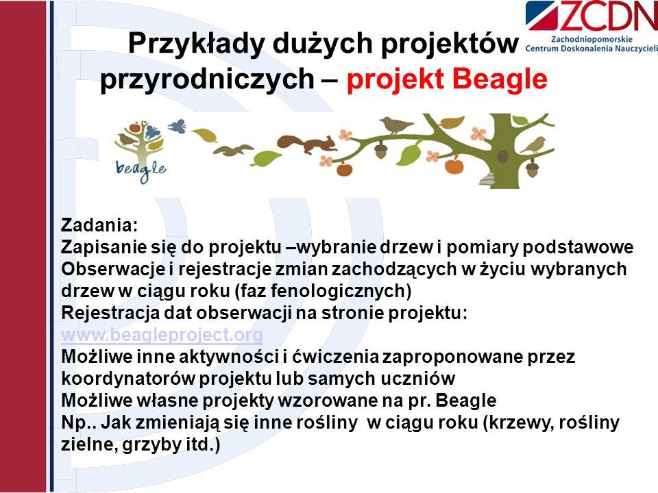 Przykłady dużych projektów przyrodniczych – projekt Beagle Zadania: Zapisanie się do projektu –wybranie drzew i pomiary podstawowe Obserwacje i rejest