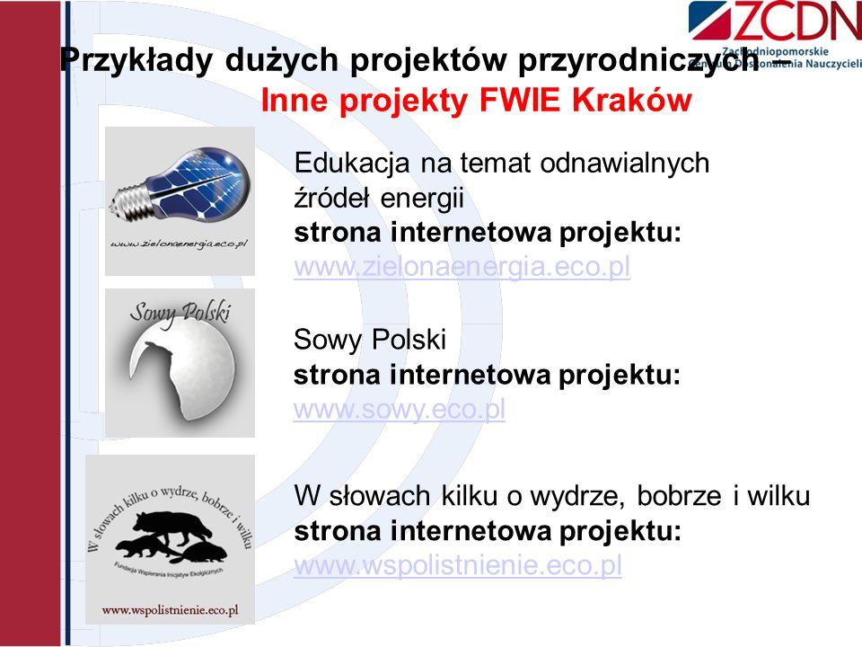 Przykłady dużych projektów przyrodniczych – Inne projekty FWIE Kraków Sowy Polski strona internetowa projektu: www.sowy.eco.pl www.sowy.eco.pl Edukacj