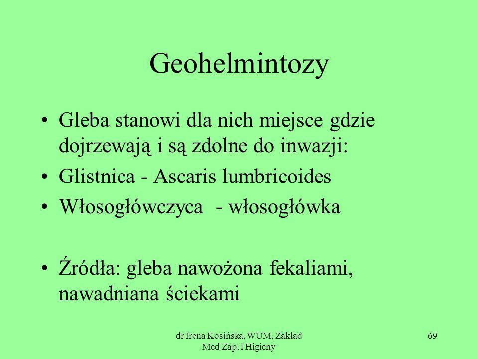 dr Irena Kosińska, WUM, Zakład Med Zap. i Higieny 69 Geohelmintozy Gleba stanowi dla nich miejsce gdzie dojrzewają i są zdolne do inwazji: Glistnica -