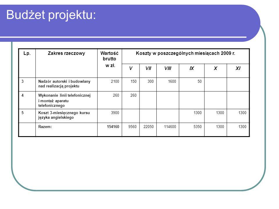 Budżet projektu: Lp.Zakres rzeczowyWartość brutto w zł. Koszty w poszczególnych miesiącach 2009 r. VVIIVIIIIXXXI 3Nadzór autorski i budowlany nad real