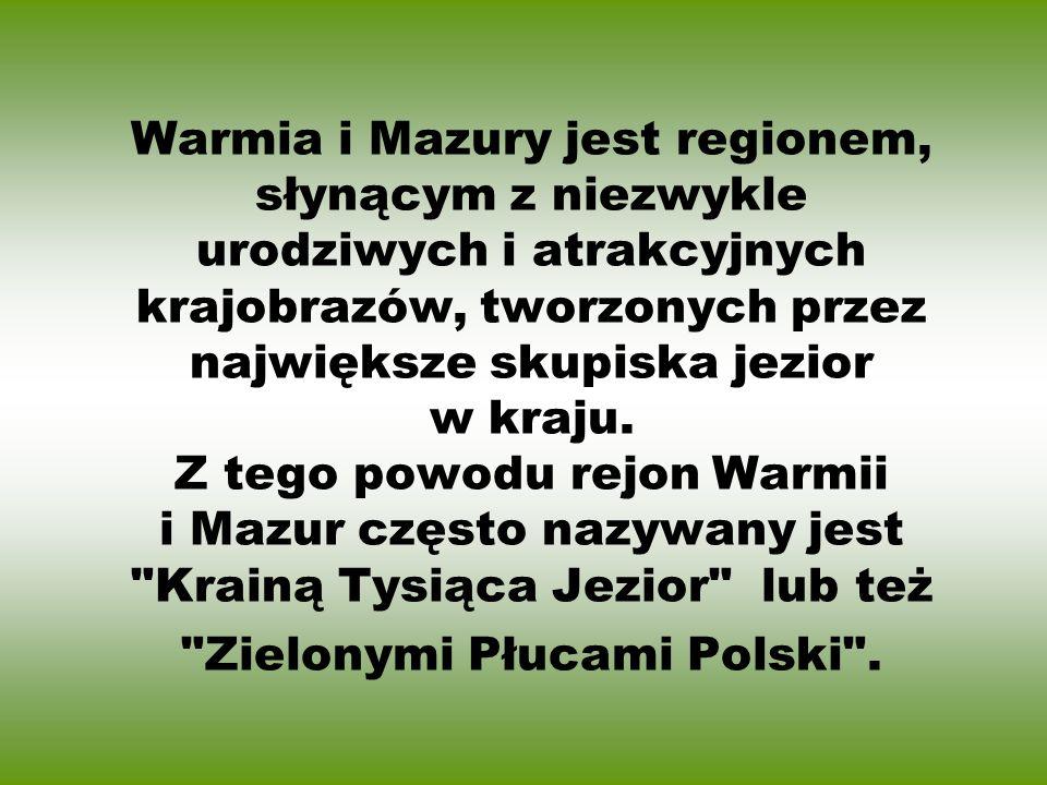 Znak Promocyjny Zielone Płuca Polski