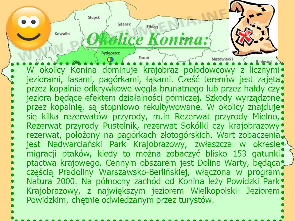 Okolice Konina: W okolicy Konina dominuje krajobraz polodowcowy z licznymi jeziorami, lasami, pagórkami, łąkami. Cześć terenów jest zajęta przez kopal