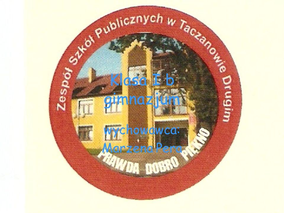 Klasa I b gimnazjum wychowawca: Marzena Pera