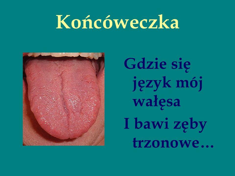 Końcóweczka Gdzie się język mój wałęsa I bawi zęby trzonowe…
