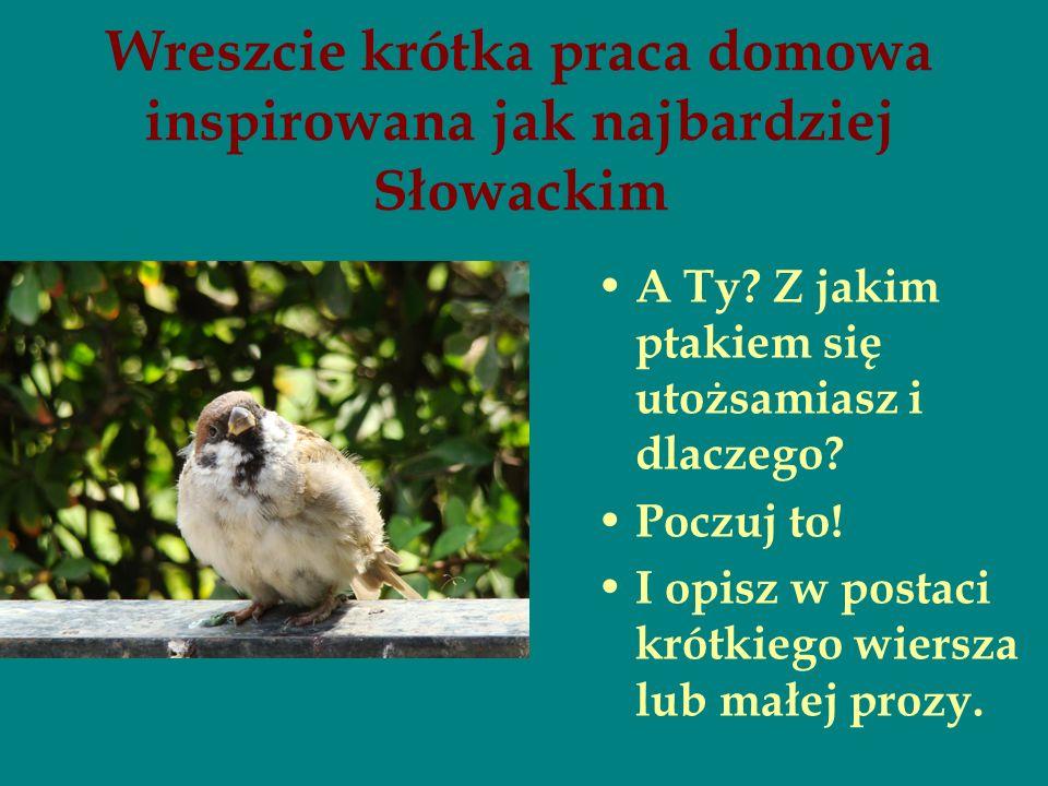 Wreszcie krótka praca domowa inspirowana jak najbardziej Słowackim A Ty? Z jakim ptakiem się utożsamiasz i dlaczego? Poczuj to! I opisz w postaci krót