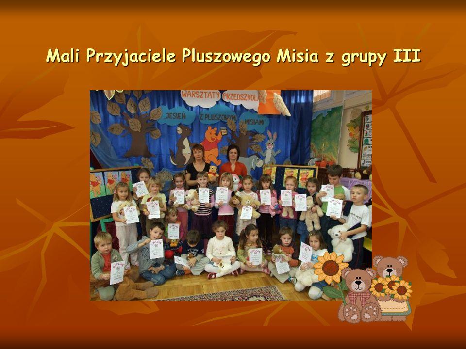 Mali Przyjaciele Pluszowego Misia z grupy III