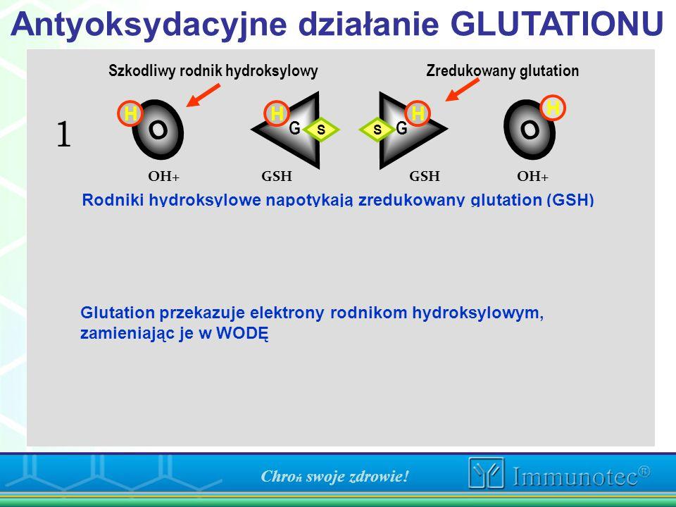 Szkodliwy rodnik hydroksylowy Zredukowany glutation O O H HH OO O O H H H HH GG HH S S S S S S HH Rodniki hydroksylowe napotykają zredukowany glutatio