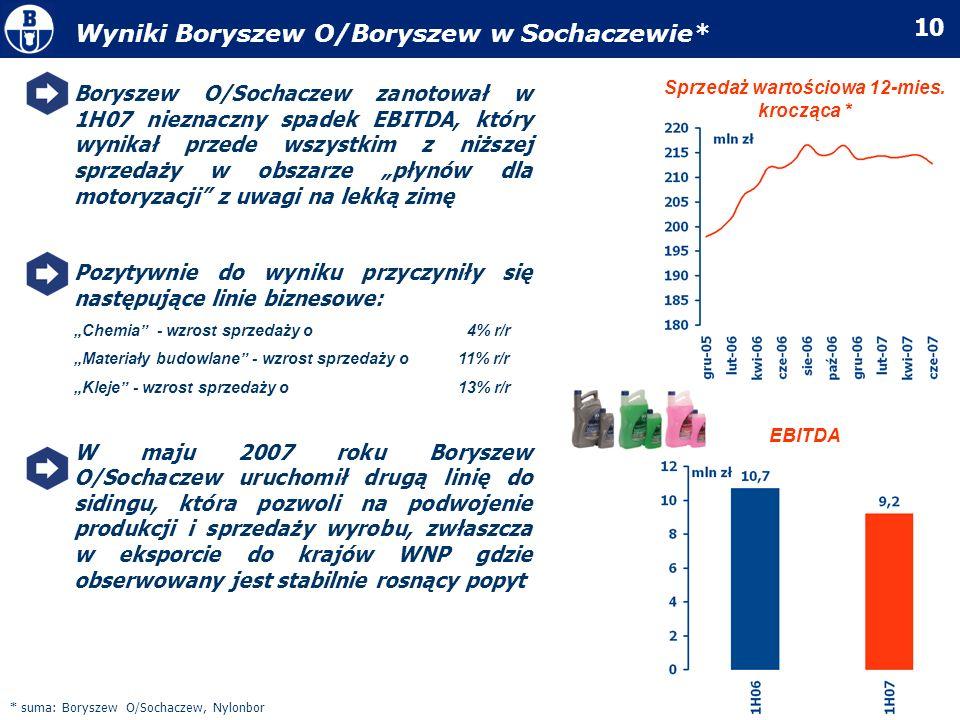 10 Boryszew O/Sochaczew zanotował w 1H07 nieznaczny spadek EBITDA, który wynikał przede wszystkim z niższej sprzedaży w obszarze płynów dla motoryzacj