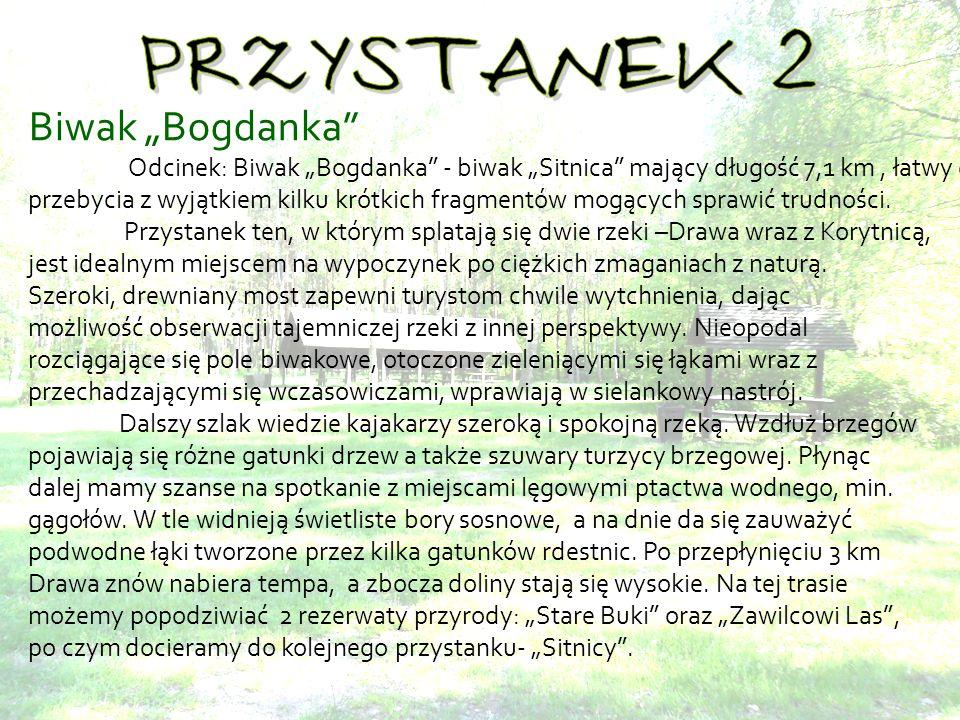 Biwak Bogdanka Odcinek: Biwak Bogdanka - biwak Sitnica mający długość 7,1 km, łatwy do przebycia z wyjątkiem kilku krótkich fragmentów mogących sprawić trudności.