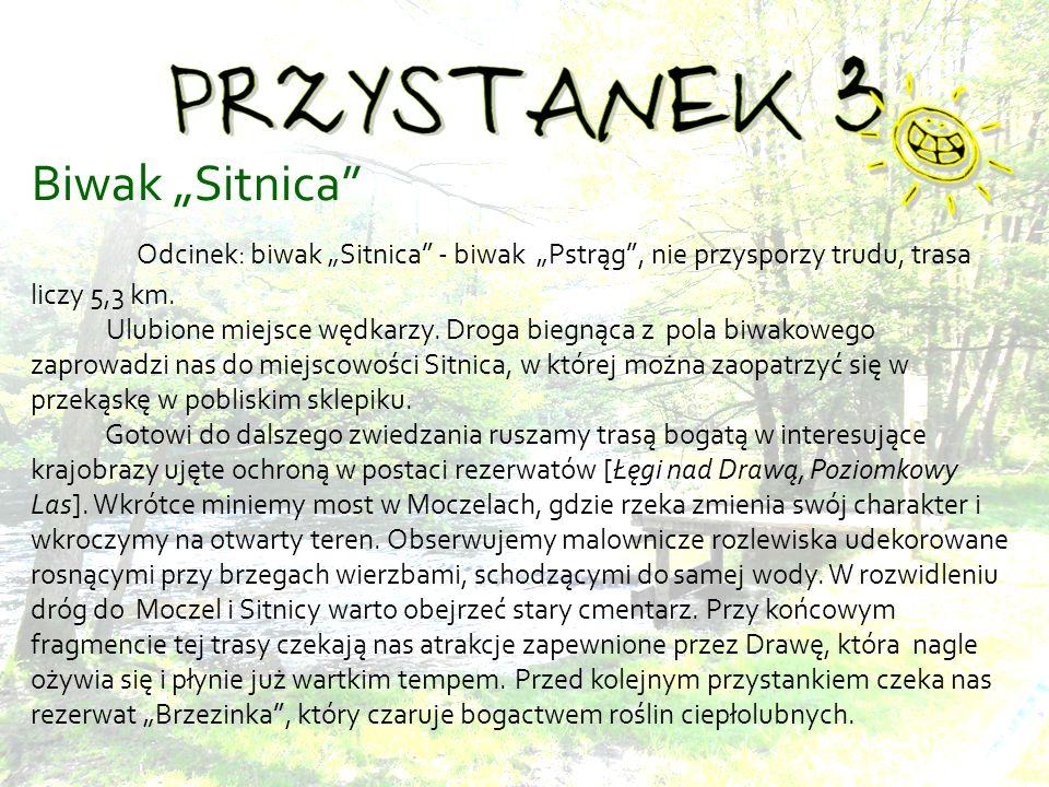 Biwak Sitnica Odcinek: biwak Sitnica - biwak Pstrąg, nie przysporzy trudu, trasa liczy 5,3 km.