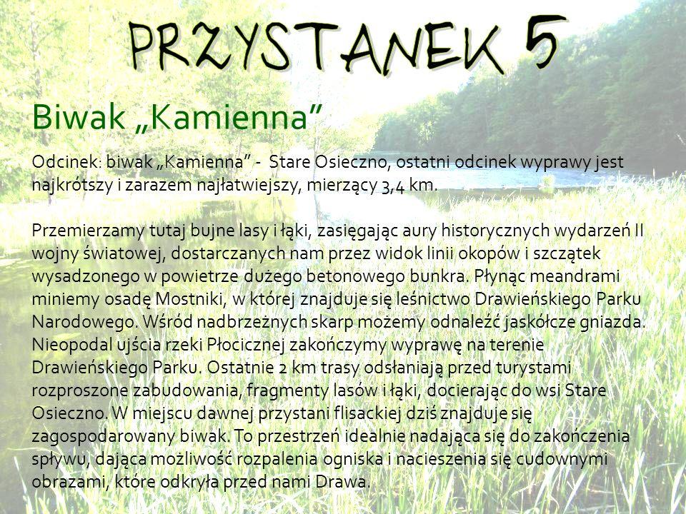 Biwak Kamienna Odcinek: biwak Kamienna - Stare Osieczno, ostatni odcinek wyprawy jest najkrótszy i zarazem najłatwiejszy, mierzący 3,4 km.