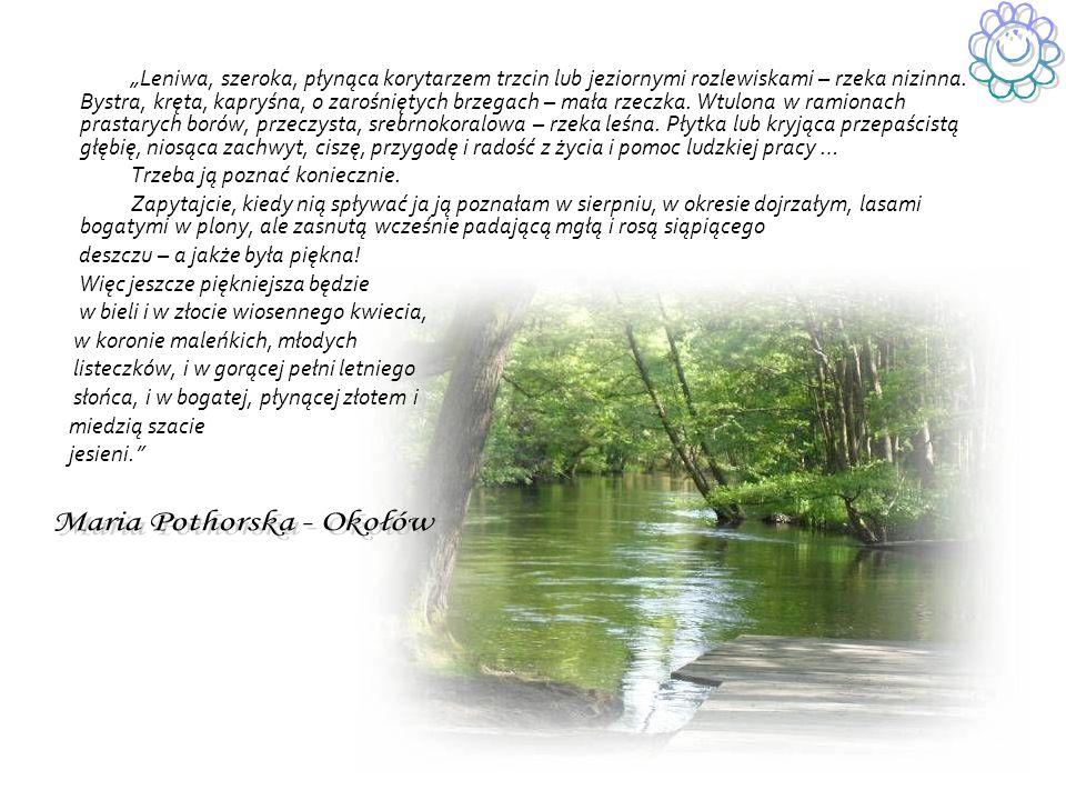 Leniwa, szeroka, płynąca korytarzem trzcin lub jeziornymi rozlewiskami – rzeka nizinna.