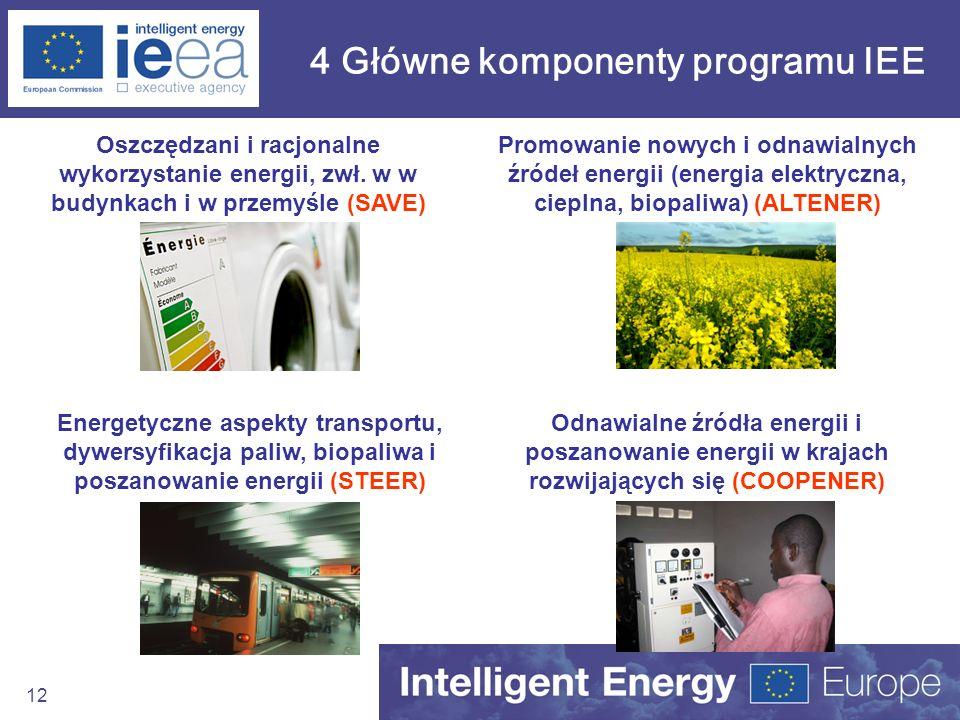 12 4 Główne komponenty programu IEE Oszczędzani i racjonalne wykorzystanie energii, zwł. w w budynkach i w przemyśle (SAVE) Promowanie nowych i odnawi