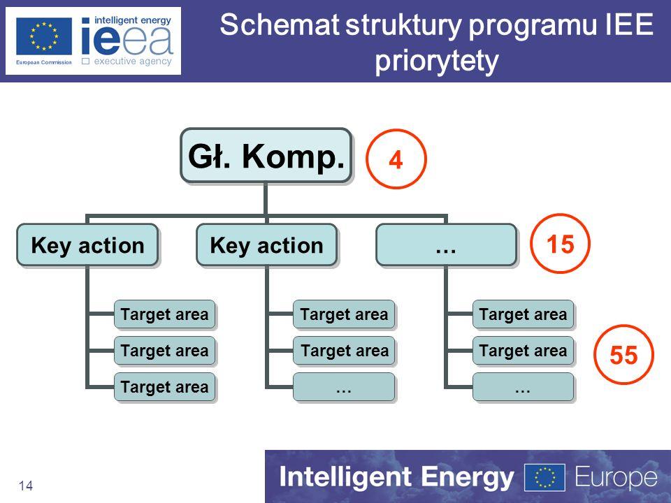 14 Gł. Komp. Key action Target area Key action Target area … … … Schemat struktury programu IEE priorytety 15 55 4