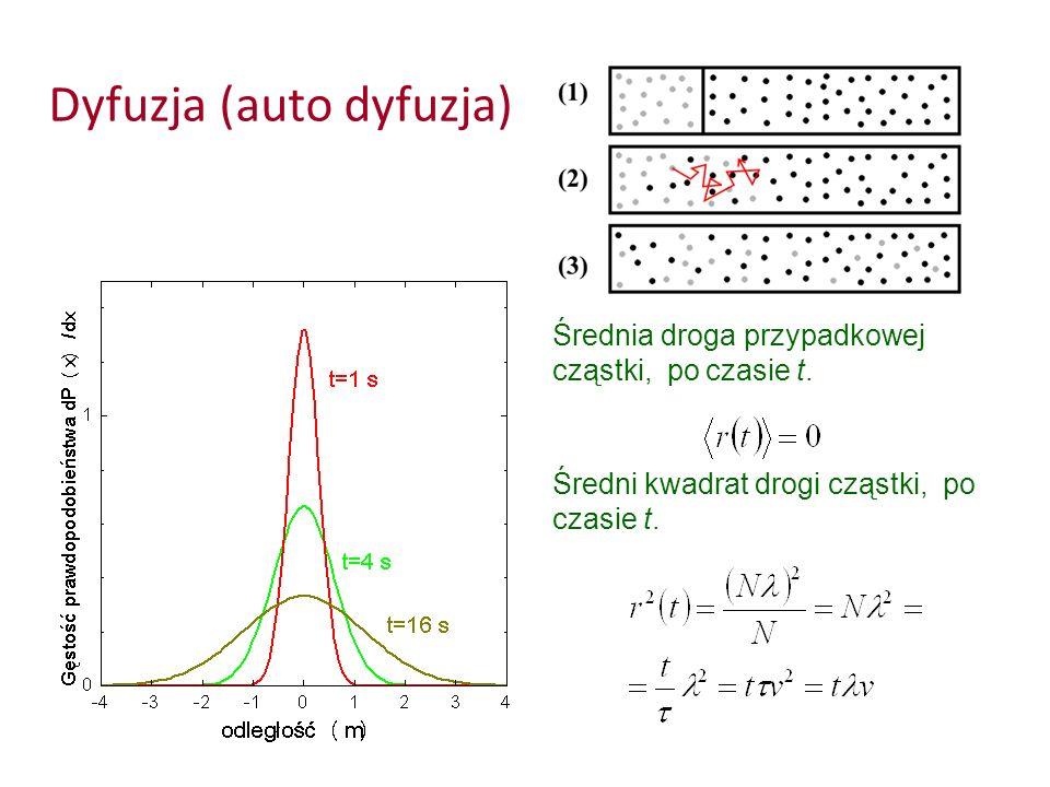 Dyfuzja (auto dyfuzja) Średnia droga przypadkowej cząstki, po czasie t. Średni kwadrat drogi cząstki, po czasie t.