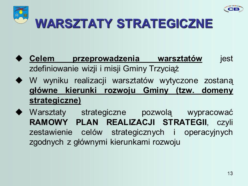 13 WARSZTATY STRATEGICZNE Celem przeprowadzenia warsztatów jest zdefiniowanie wizji i misji Gminy Trzyciąż W wyniku realizacji warsztatów wytyczone zostaną główne kierunki rozwoju Gminy (tzw.