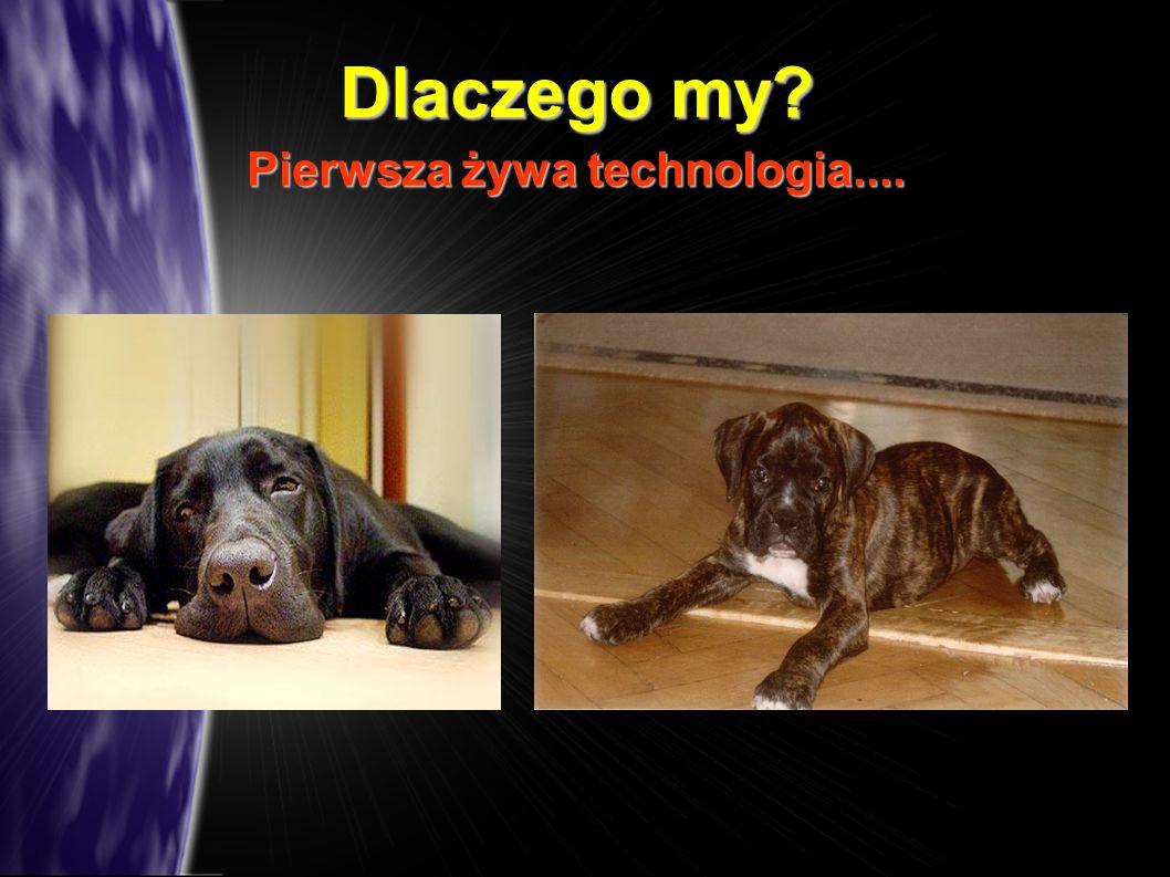 Dlaczego my? Pierwsza żywa technologia....