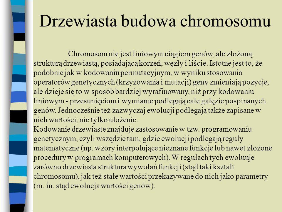 Drzewiasta budowa chromosomu Chromosom nie jest liniowym ciągiem genów, ale złożoną strukturą drzewiastą, posiadającą korzeń, węzły i liście. Istotne