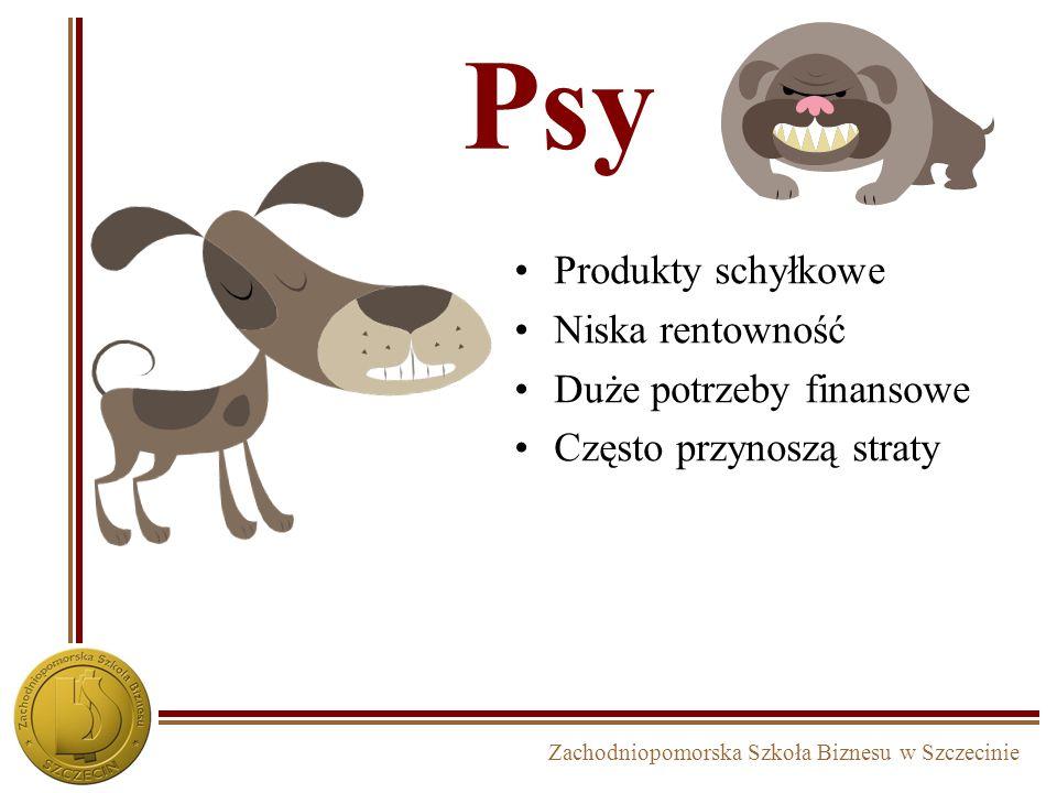 Zachodniopomorska Szkoła Biznesu w Szczecinie Psy Produkty schyłkowe Niska rentowność Duże potrzeby finansowe Często przynoszą straty