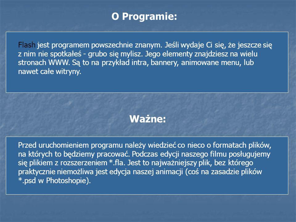 O Programie: Flash jest programem powszechnie znanym. Jeśli wydaje Ci się, że jeszcze się z nim nie spotkałeś - grubo się mylisz. Jego elementy znajdz