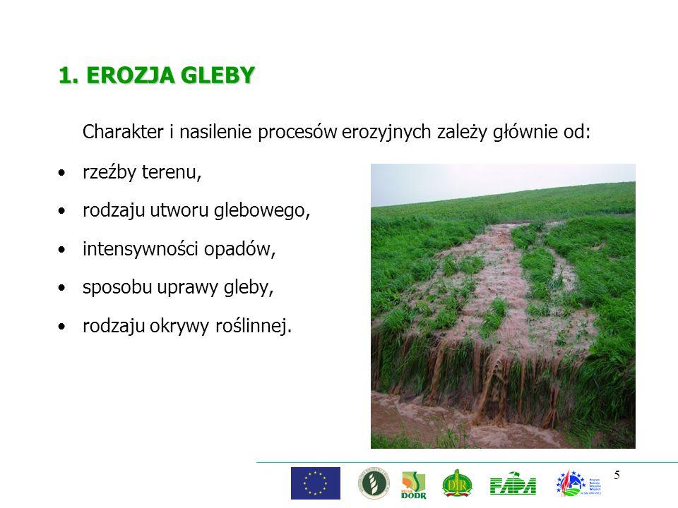 5 1. EROZJA GLEBY Charakter i nasilenie procesów erozyjnych zależy głównie od: rzeźby terenu, rodzaju utworu glebowego, intensywności opadów, sposobu
