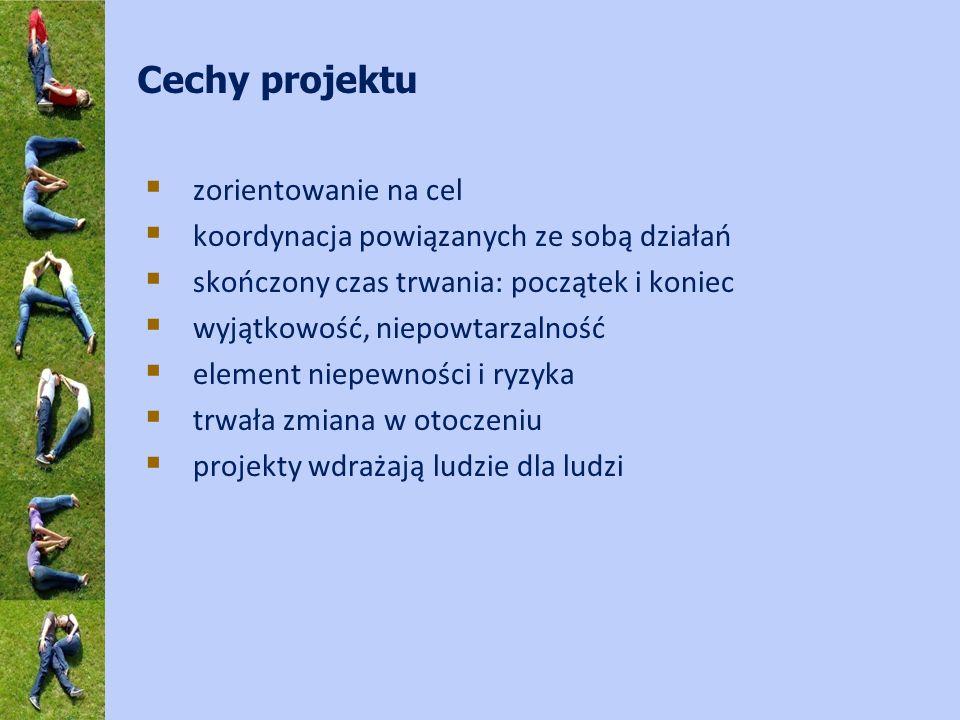 Projekt powinien posiadać: jasno zdefiniowanych interesariuszy (udziałowców) oraz grupę docelową projektu; zdefiniowane narzędzia koordynacji, zarządzania i finansowania; system monitoringu i ewaluacji; odpowiedni poziom finansowych i ekonomicznych analiz (korzyści projektu przeważają nad kosztami)