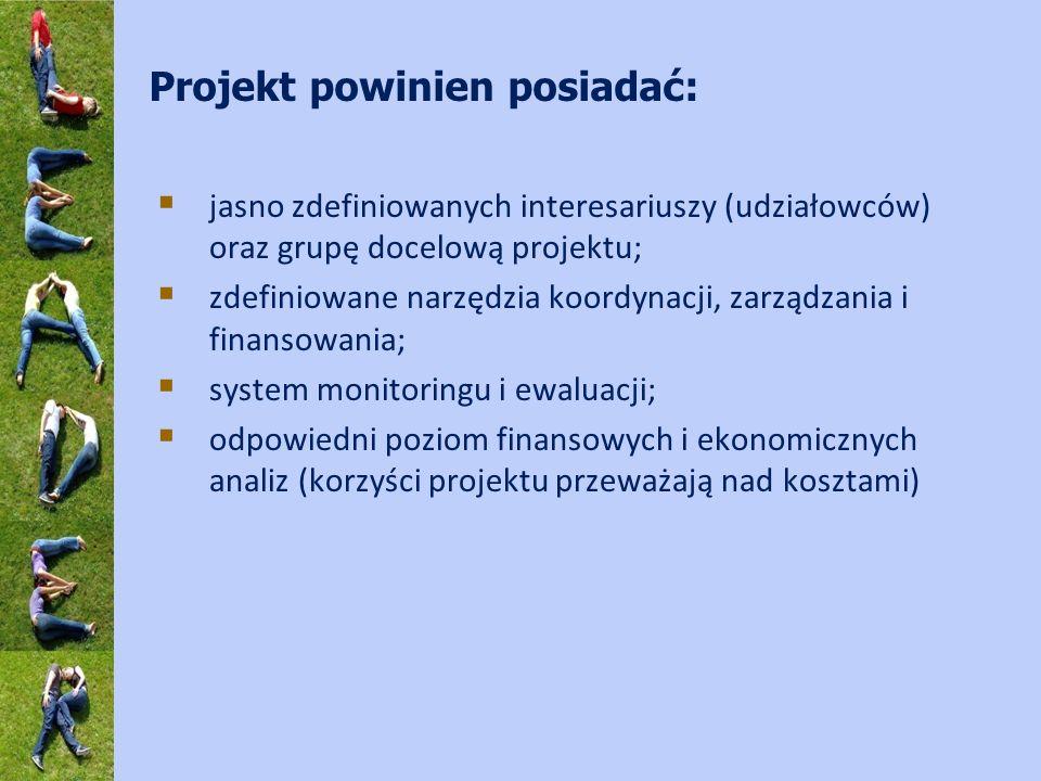 Projekt powinien posiadać: jasno zdefiniowanych interesariuszy (udziałowców) oraz grupę docelową projektu; zdefiniowane narzędzia koordynacji, zarządz