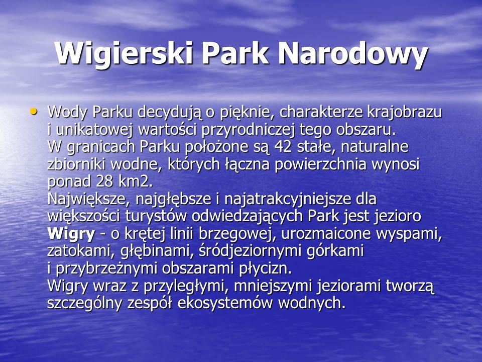 Wigierski Park Narodowy Wody Parku decydują o pięknie, charakterze krajobrazu i unikatowej wartości przyrodniczej tego obszaru. W granicach Parku poło