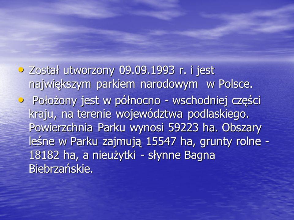 Został utworzony 09.09.1993 r. i jest największym parkiem narodowym w Polsce. Został utworzony 09.09.1993 r. i jest największym parkiem narodowym w Po