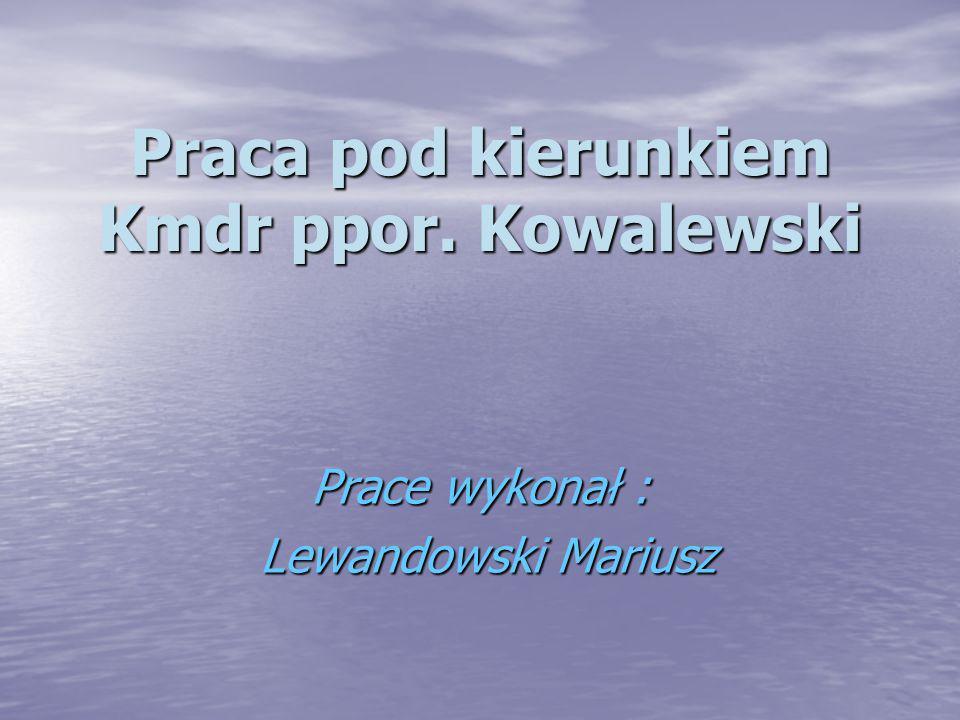 Praca pod kierunkiem Kmdr ppor. Kowalewski Prace wykonał : Lewandowski Mariusz Lewandowski Mariusz