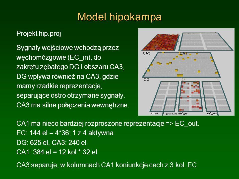 Model hipokampa Projekt hip.proj Sygnały wejściowe wchodzą przez węchomózgowie (EC_in), do zakrętu zębatego DG i obszaru CA3, DG wpływa również na CA3