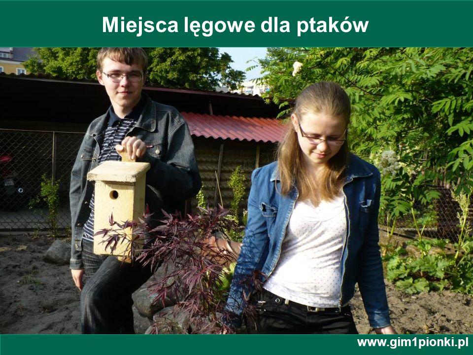 Publiczne Gimnazjum z Oddziałami Integracyjnymi nr 1 im. Jana Kochanowskiego w Pionkach Miejsca lęgowe dla ptaków www.gim1pionki.pl