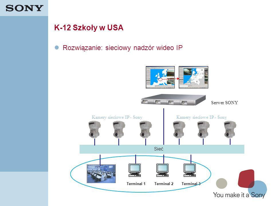 41 K-12 Szkoły w USA Rozwiązanie: sieciowy nadzór wideo IP Terminal 1Terminal 2Terminal 3 Sieć Kamery sieciowe IP - Sony Serwer SONY Kamery sieciowe I