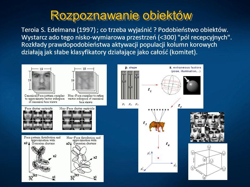 Rozpoznawanie obiektów Teroia S. Edelmana (1997) ; co trzeba wyjaśnić ? Podobieństwo obiektów. Wystarcz ado tego nisko-wymiarowa przestrzeń (<300)