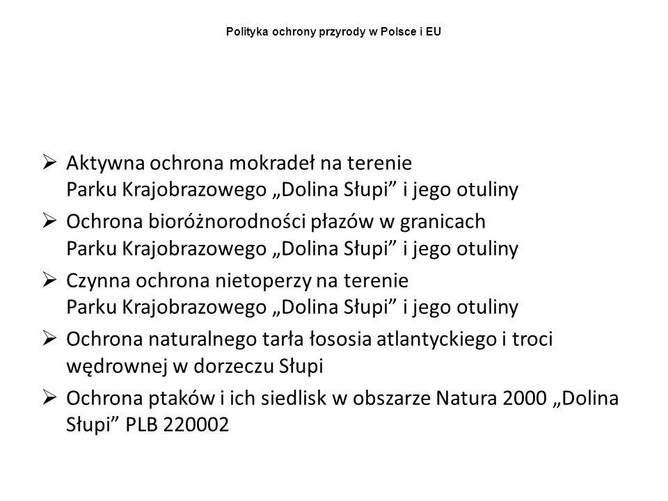 Polityka ochrony przyrody w Polsce i EU Aktywna ochrona mokradeł na terenie Parku Krajobrazowego Dolina Słupi i jego otuliny Ochrona bioróżnorodności