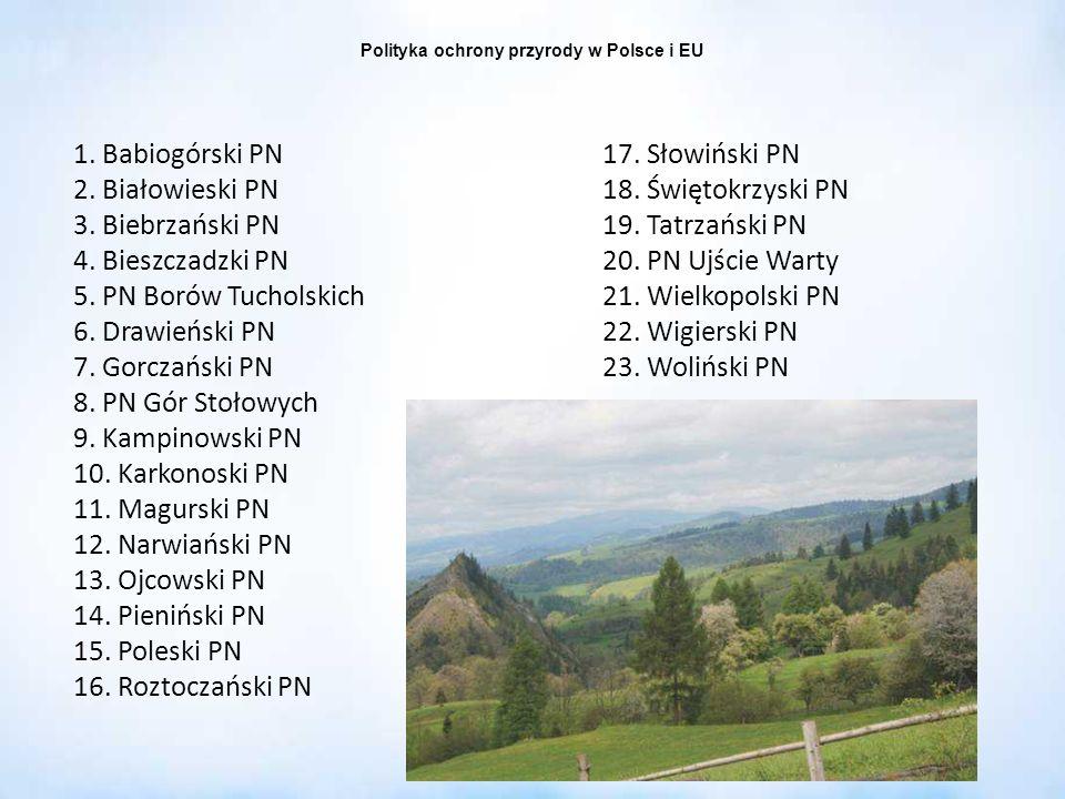 Polityka ochrony przyrody w Polsce i EU 1. Babiogórski PN 2. Białowieski PN 3. Biebrzański PN 4. Bieszczadzki PN 5. PN Borów Tucholskich 6. Drawieński