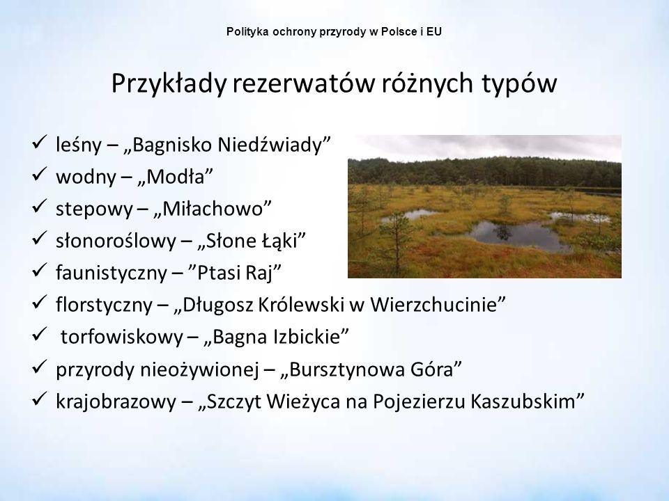 Polityka ochrony przyrody w Polsce i EU Przykłady rezerwatów różnych typów leśny – Bagnisko Niedźwiady wodny – Modła stepowy – Miłachowo słonoroślowy