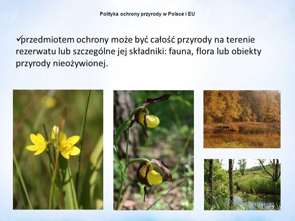 Polityka ochrony przyrody w Polsce i EU przedmiotem ochrony może być całość przyrody na terenie rezerwatu lub szczególne jej składniki: fauna, flora l