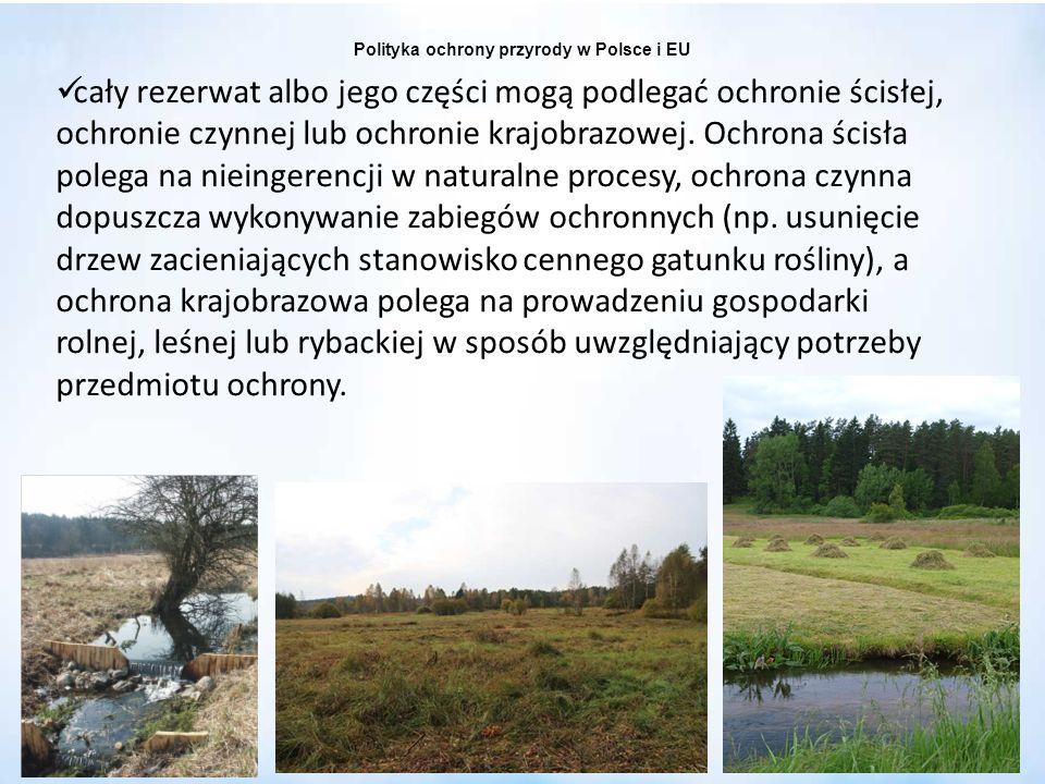 Polityka ochrony przyrody w Polsce i EU cały rezerwat albo jego części mogą podlegać ochronie ścisłej, ochronie czynnej lub ochronie krajobrazowej. Oc