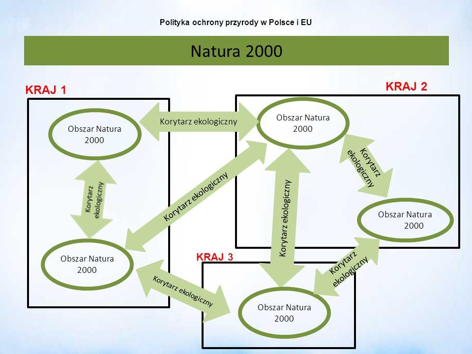 Polityka ochrony przyrody w Polsce i EU Natura 2000 Obszar Natura 2000 Korytarz ekologiczny Obszar Natura 2000 Korytarz ekologiczny KRAJ 1 KRAJ 2 KRAJ
