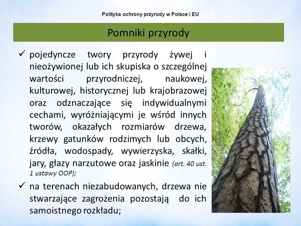 Polityka ochrony przyrody w Polsce i EU Pomniki przyrody pojedyncze twory przyrody żywej i nieożywionej lub ich skupiska o szczególnej wartości przyro